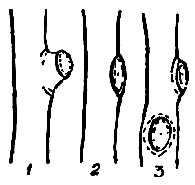 Техника вырезки боковых разветвлений