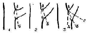 Определение правильного направления плоскости cреза ветвей