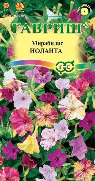 Цветы ночная красавица семена