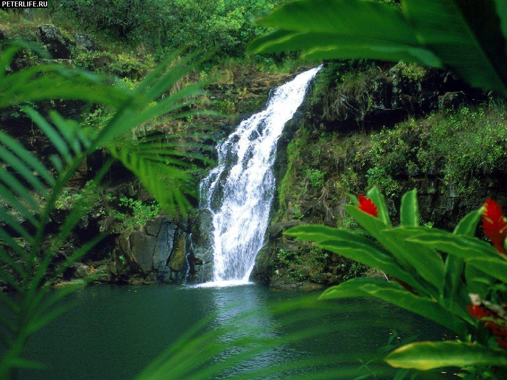 Фото природа пейзажи № 870